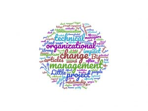 Organization and technical change management